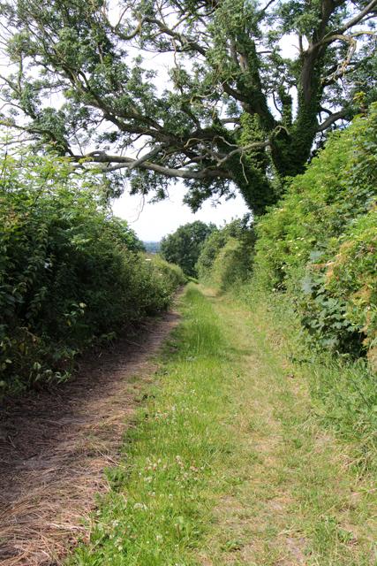 A walk along Kirkgate Lane (15)