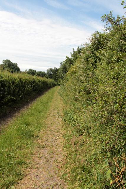 A walk along Kirkgate Lane (16)