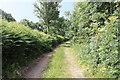 SD5273 : A walk along Kirkgate Lane (17) by Kate Jewell