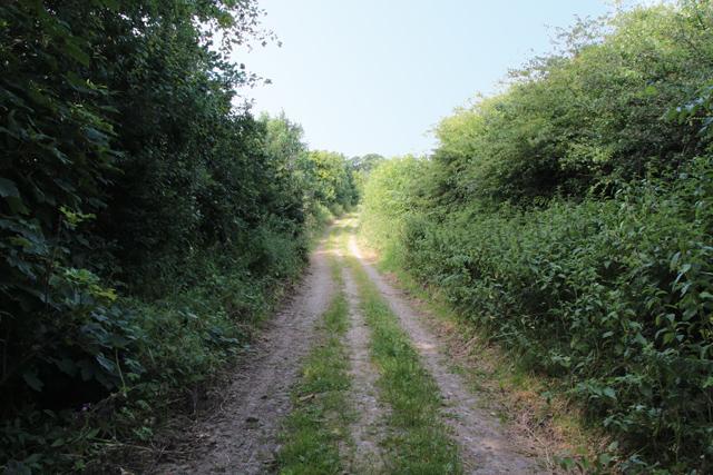 A walk along Kirkgate Lane (18)