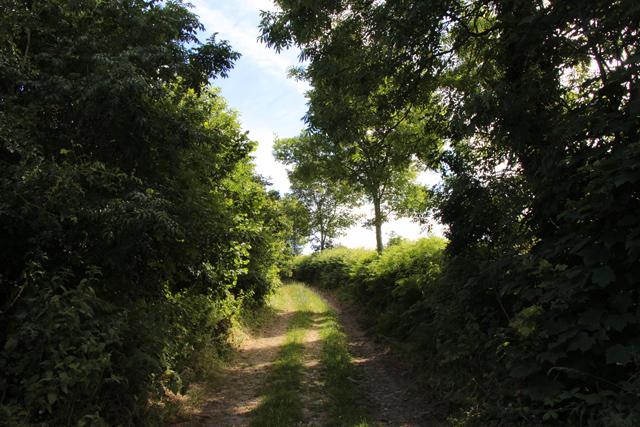 A walk along Kirkgate Lane (19)
