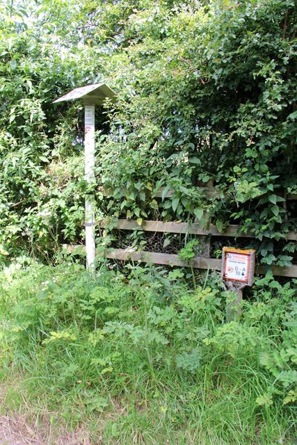 A walk along Kirkgate Lane (20)