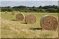 SO8845 : Five hay bales in a row by Philip Halling