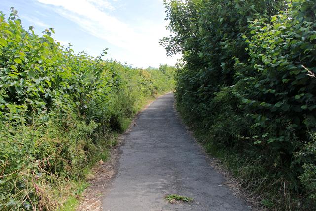 A walk along Kirkgate Lane (23)