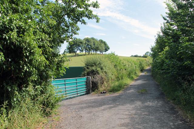 A walk along Kirkgate Lane (24)