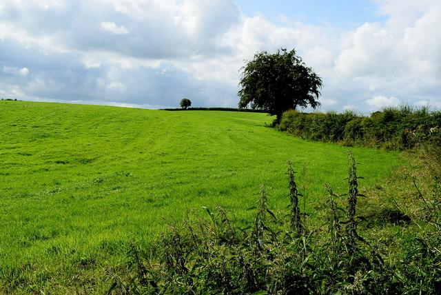 Gortnacreagh Townland