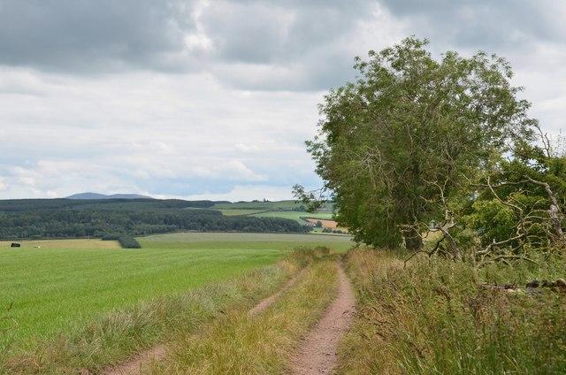 Field track, Hillhead