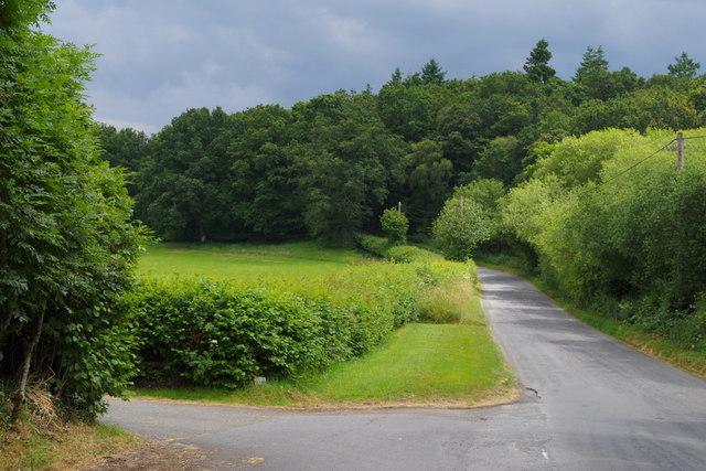 Lane towards Big Wood