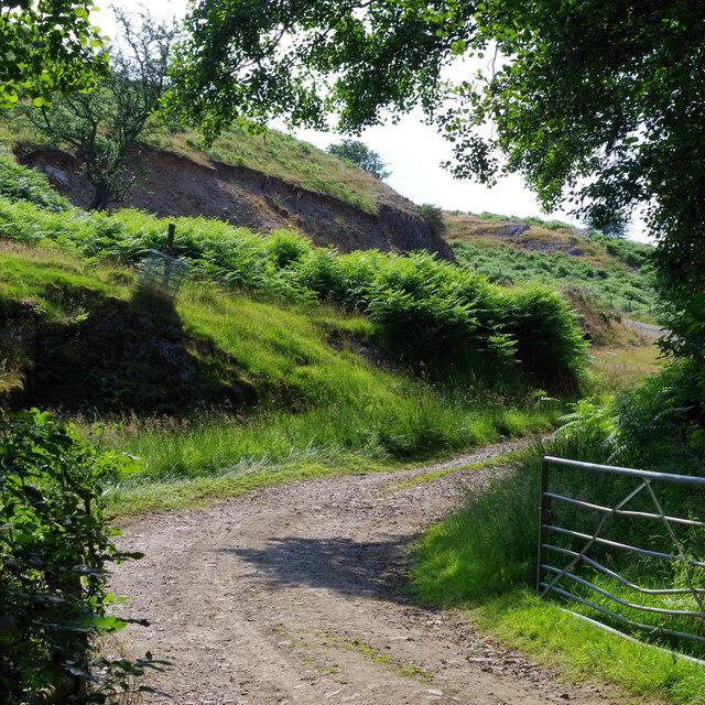 Farm track leaving lane