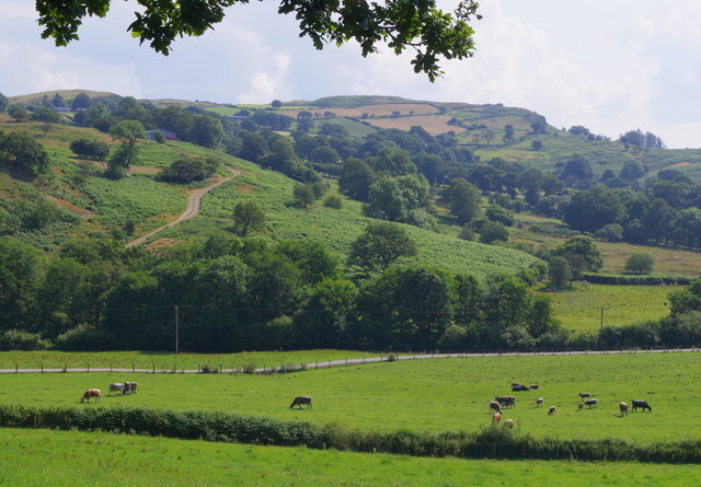 Valley of Dulas Brook and hillside beyond