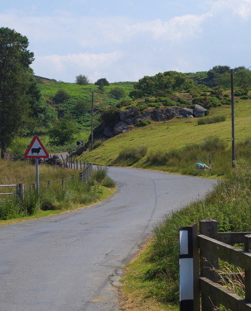 Lane on to the open hill above the cattle grid