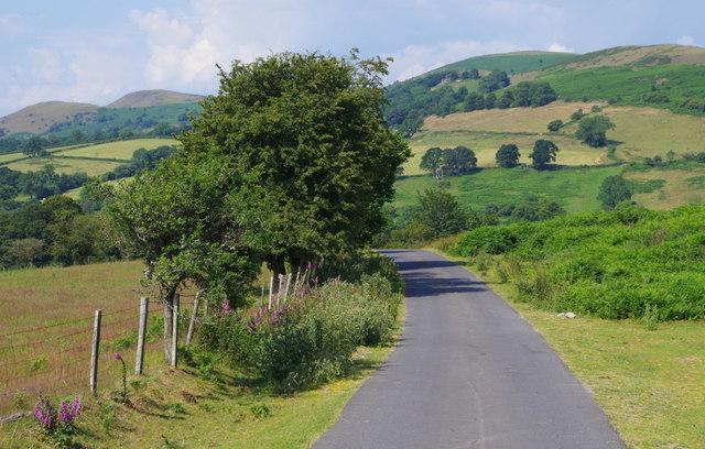 Lane by Perthi Common