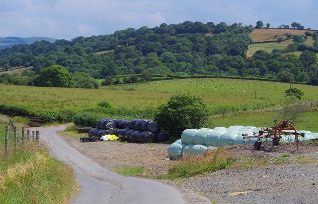 Country lane near Franksbridge