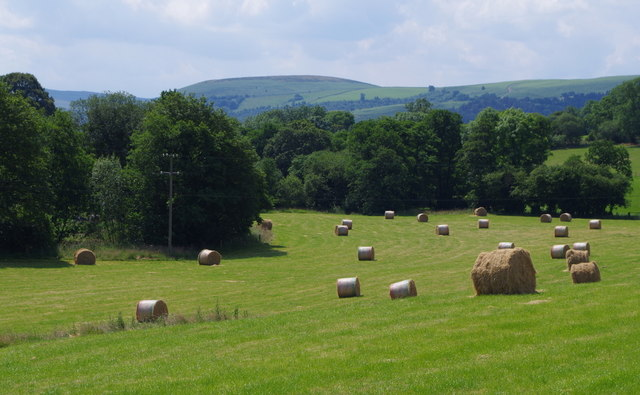 Meadow with bales in the upper Edw Valley