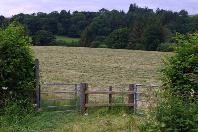 Gateway to meadow and start of footpath
