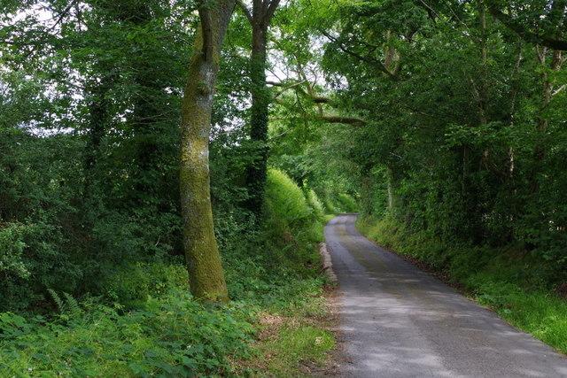 Lane below Hirllwyn Bank