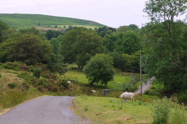 Lane to scattered farms at Camnant