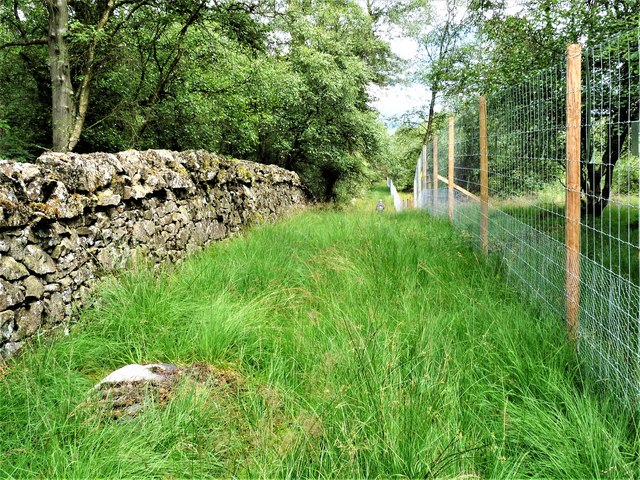 Craigmaddie Plantation