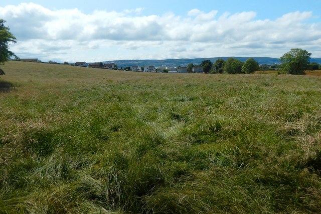 Field beside Barrs Road