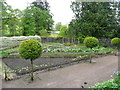 SN5822 : Lollipop trees in the Lower Walled Garden, Aberglasney by Humphrey Bolton