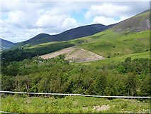 NY2725 : The descent from Latrigg [10] by Michael Dibb
