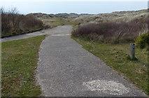 SJ1184 : Permissive bridleway through the dunes at the Warren by Mat Fascione