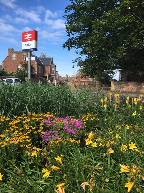 Beautiful Flower Bed by Station Road Dunbar