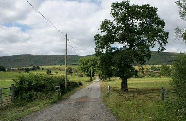 Road to Burniebrae Farm