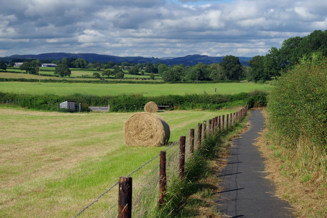 Footpath and field by the A4081 near Llanyre