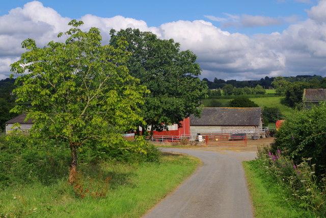 Lane corner by Upper Dol-llwyn-hir