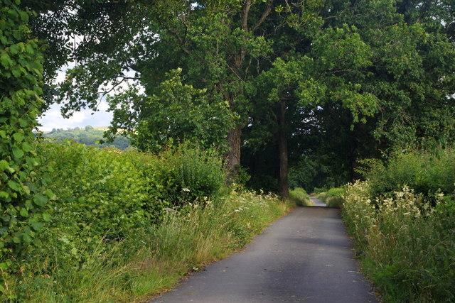 Driveway to Lower Dol-llwyn-hir