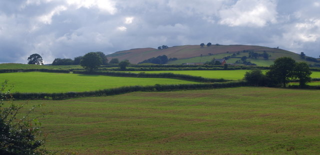 Fields south of Llanyre