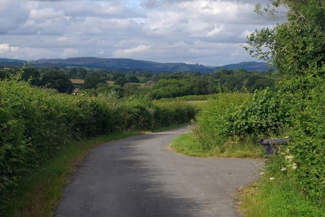 Lane past the entrance to Lower Dol-llwyn-hir