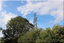 TL3930 : Pylon by Biggin Hill north of Hare Street by David Howard