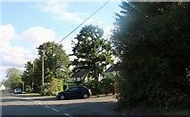TL4439 : High Street Chrishall by David Howard