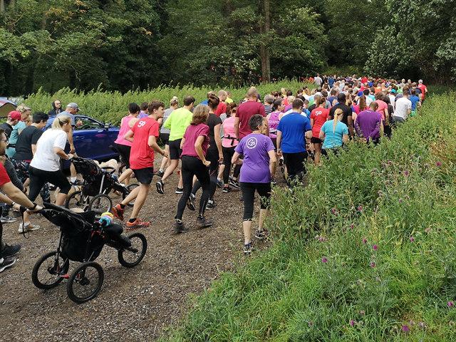 Panshanger Park Run 257 - The off