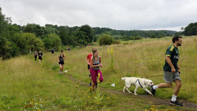 Panshanger Park Run 257 - the final bend and hill