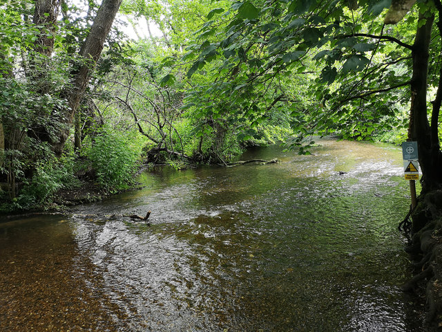 River Mimram, Panshanger Park