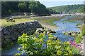 SM8024 : Solva Harbour by Stephen McKay