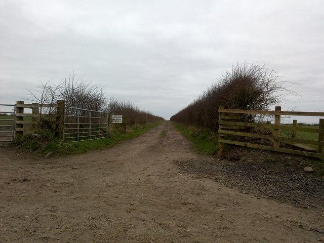 Dirt Lane, Rockcliffe