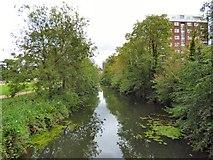 SP3165 : River Leam by Gerald England