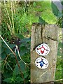 NZ2360 : Waymarkers in Watergate Forest Park by Oliver Dixon