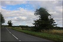 TL3729 : Hare Street Road, Buntingford by David Howard