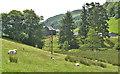 NY4902 : Fields near Beech Hill Farm, Long Sleddale by Nigel Brown