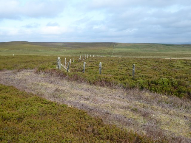 A fixed point on the Great Moor