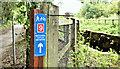 J3067 : National Cycle Route sign, Drum Bridge, Dunmurry (July 2019) by Albert Bridge