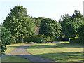 SE3227 : Site of the former Robin Hood station by Stephen Craven