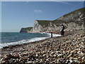 SY8080 : West Lulworth: the pebbles of Durdle Door beach by Chris Downer