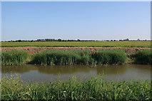 TF3516 : South Holland Main Drain by Hugh Venables