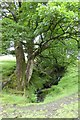 NY4003 : Stream in Troutbeck by DS Pugh